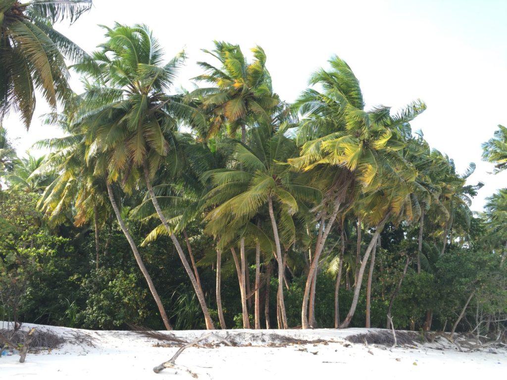 Neopakovatelný zážitek pro cestovatele - navštivte Maledivy