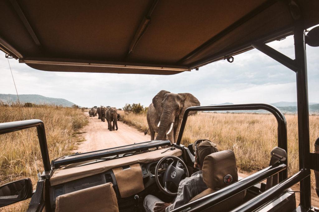 Kam zamířit v Africe?